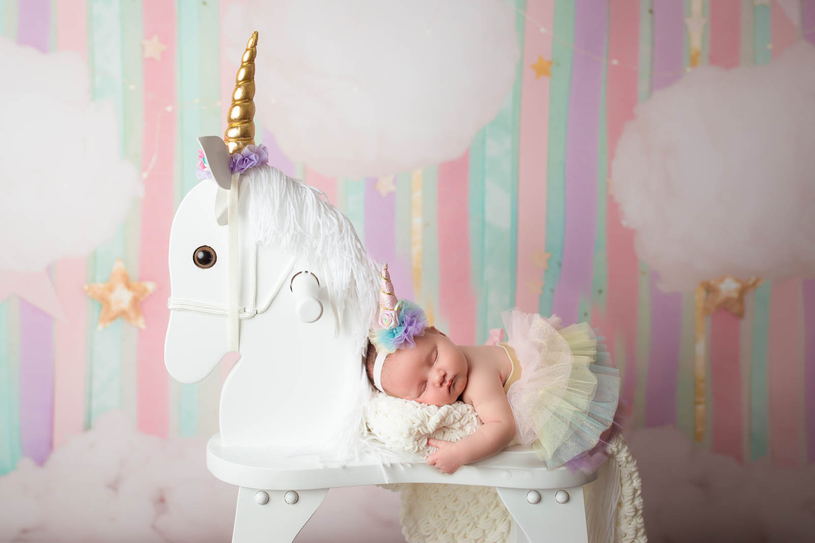 Family photography in ri and surrounding areas newborn with unicorn